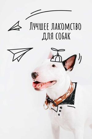 Happy Dog for Treats promotion Pinterest – шаблон для дизайна