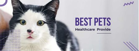Adorable Cat for pet clinic Facebook cover – шаблон для дизайну