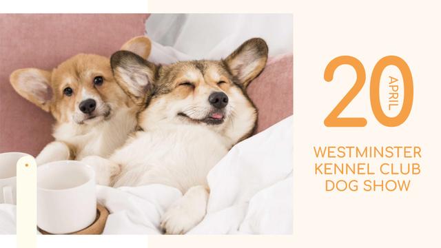 Plantilla de diseño de Pet show ad with cute Corgi Puppies FB event cover