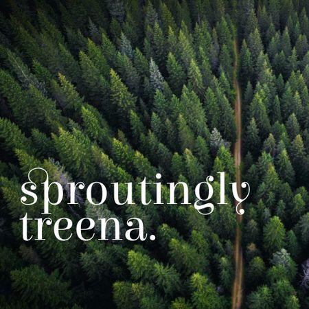 Scenic Landscape of Coniferous Forest Logo – шаблон для дизайну