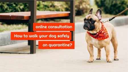 Plantilla de diseño de Walking with Dog during Quarantine FB event cover