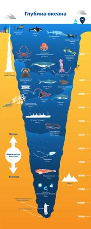 Education infographics about Ocean Depth Infographic – шаблон для дизайна
