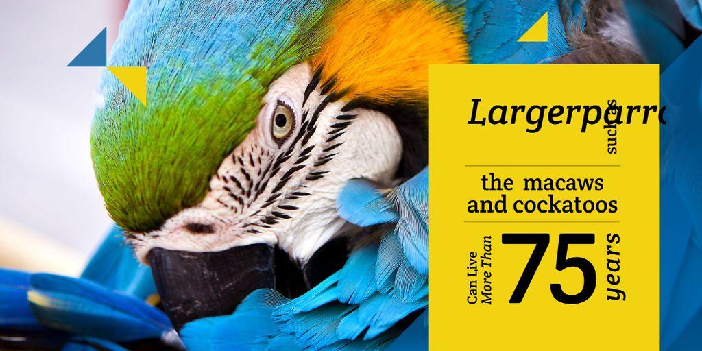 close up view of cute parrot — Maak een ontwerp