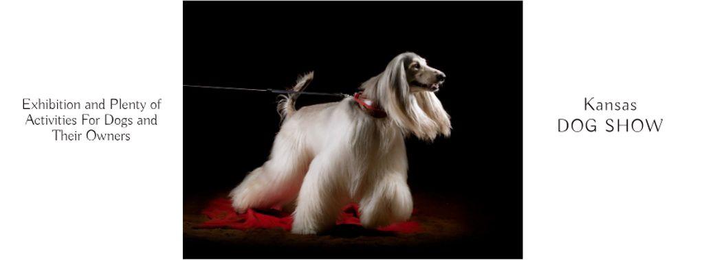 Dog Show in Kansas Annoucement — Create a Design