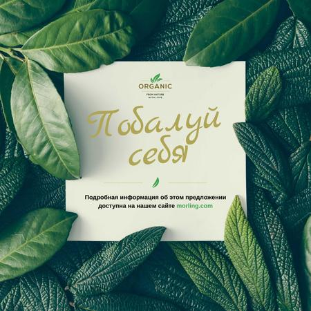 Frame of green leaves Instagram – шаблон для дизайна