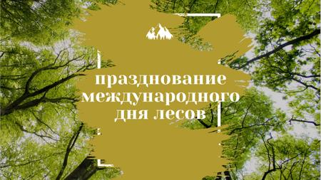 International Day of Forests Event Tall Trees Youtube Thumbnail – шаблон для дизайна