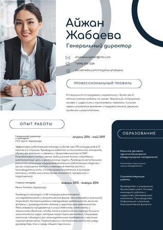Chief Executive Officer skills and experience Resume – шаблон для дизайна