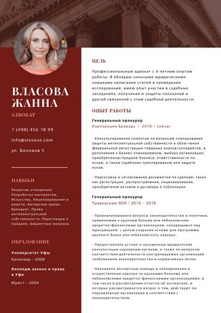 Professional Attorney skills and experience in red Resume – шаблон для дизайна