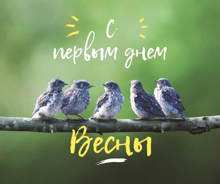 Spring Cute Birds on a Branch Facebook – шаблон для дизайна