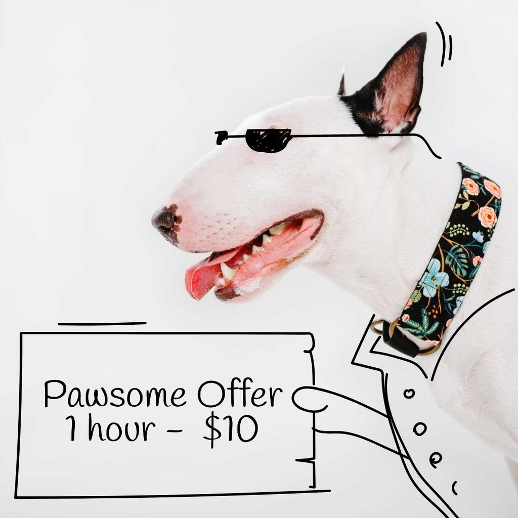 Dog Walking services offer with Funny bull terrier —デザインを作成する