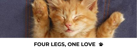 Cute sleepy red Kitten Facebook cover Modelo de Design