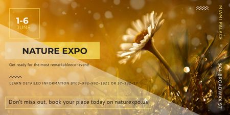 Nature Expo announcement Blooming Daisy Flower Image Design Template
