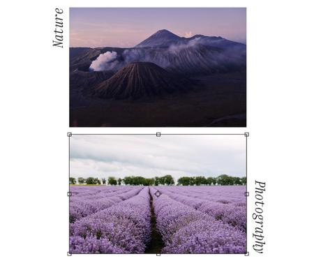 Beautiful Landscape of Mountains and Lavender Field Facebook Design Template