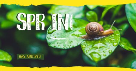 Snail on green leaf Facebook AD Tasarım Şablonu