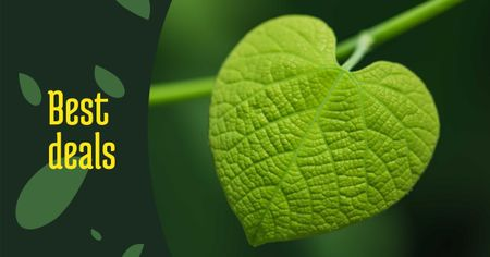 Sale Offer with Green Leaf Facebook AD Tasarım Şablonu