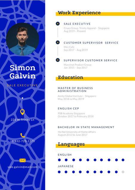 Sale Executive skills and experience Resume Modelo de Design