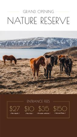 Szablon projektu Nature Reserve Opening Announcement with Herd of Horses Instagram Story