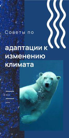 Polar bear swimming in water Graphic – шаблон для дизайна