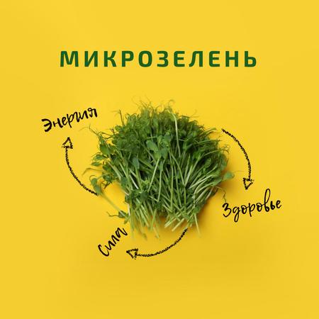nature Instagram – шаблон для дизайна