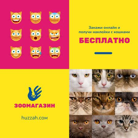 Pet Shop Offer with Cat Faces and Stickers Instagram – шаблон для дизайна