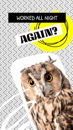 Funny Joke with Cute Owl Instagram Story – шаблон для дизайна