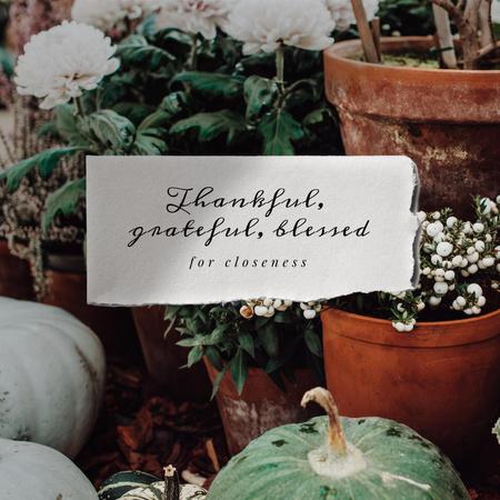 Thanksgiving Holiday Greeting with Flowers and Pumpkins Instagram – шаблон для дизайну
