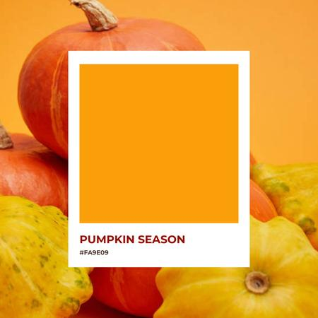 Autumn Inspiration with Ripe Pumpkins Instagram – шаблон для дизайна