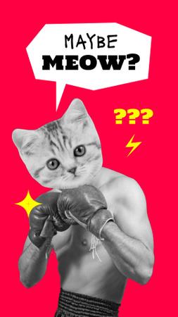 Funny Boxer with Cat's Head Instagram Video Story Modelo de Design