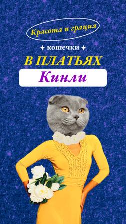 Funny Cat in Female Dress Instagram Story – шаблон для дизайна