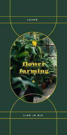 Modèle de visuel Flowers and Plants in Greenhouse - Graphic