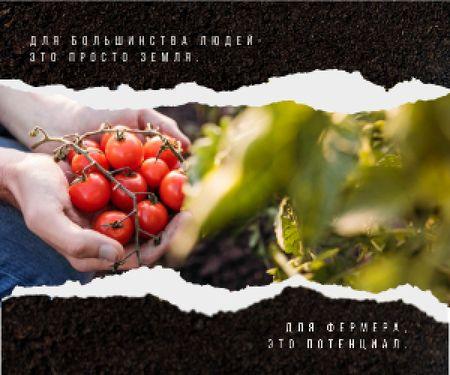 Farmer Harvesting Vegetables Medium Rectangle – шаблон для дизайна