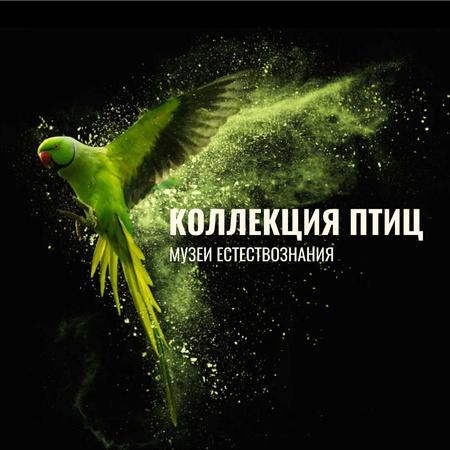 Green flying Parrot Animated Post – шаблон для дизайна