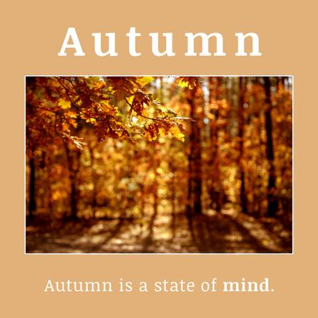 Inspirational Phrase about Autumn with Sunny Forest Instagram Modelo de Design