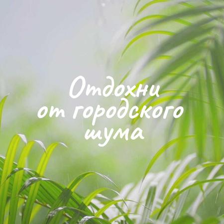 Green palm leaves on rainy day Animated Post – шаблон для дизайна