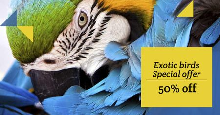 Discount Offer for Exotic Birds with Parrot Facebook ADデザインテンプレート