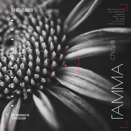 Studio Exhibition announcement on Blooming Daisy Flower Instagram AD – шаблон для дизайна