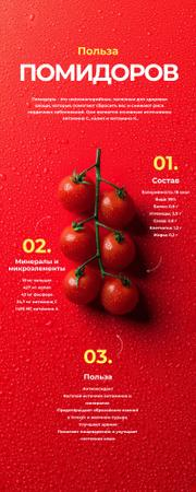 Food infographics about Benefits of Tomato Infographic – шаблон для дизайна
