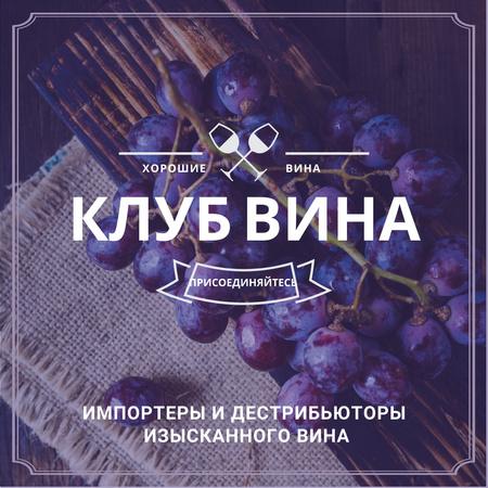 Wine club Invitation with fresh grapes Instagram AD – шаблон для дизайна