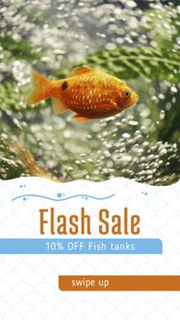 Discount Sale Offer with Golden Fish