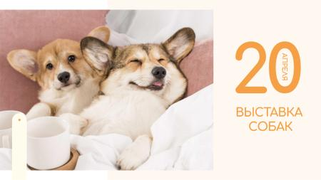 Pet show ad with cute Corgi Puppies FB event cover – шаблон для дизайна