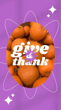 Thanksgiving Holiday Greeting with Ripe Pumpkins Instagram Story Modelo de Design