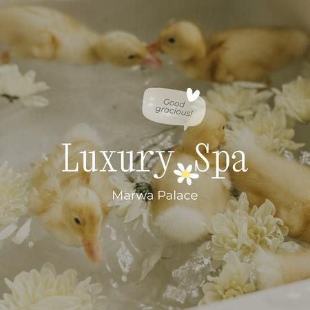 SPA Services Ad with Cute Ducklings in Flowers Instagram Design Template