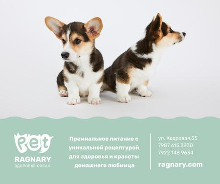 Dog treats for cute Corgi Puppies Facebook – шаблон для дизайна