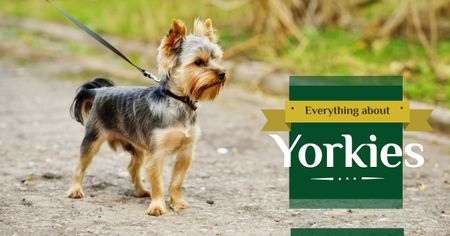 Plantilla de diseño de Yorkshire Terrier on Walk Facebook AD