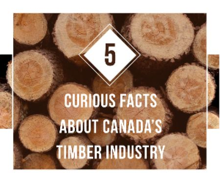 Timber Facts Pile of Wooden Logs Medium Rectangle Design Template