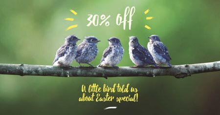 Plantilla de diseño de Easter Offer with Cute Birds on Branch Facebook AD