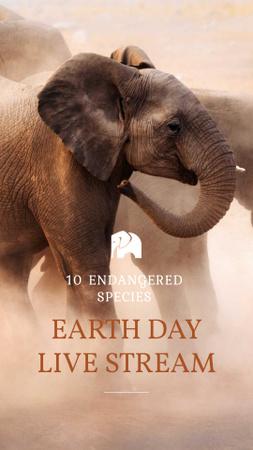 Modèle de visuel Earth Day Live Stream Ad with Elephants - Instagram Story
