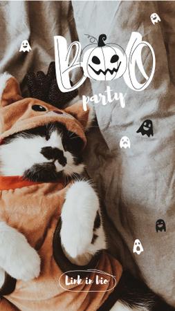 Plantilla de diseño de Halloween Party Announcement with Cute Cat in Costume Instagram Story