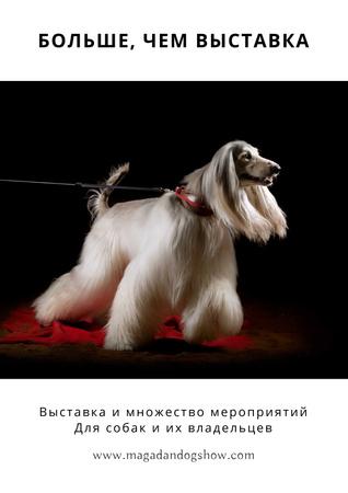 Dog Show in Kansas Poster – шаблон для дизайна