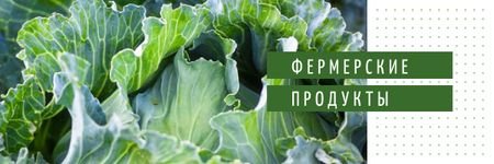 Healthy Food with Green Cabbage Email header – шаблон для дизайна